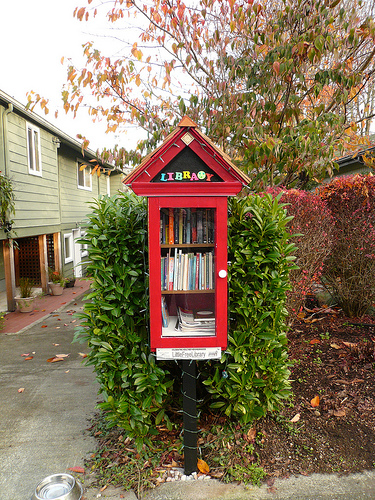 Little Free Library example 2