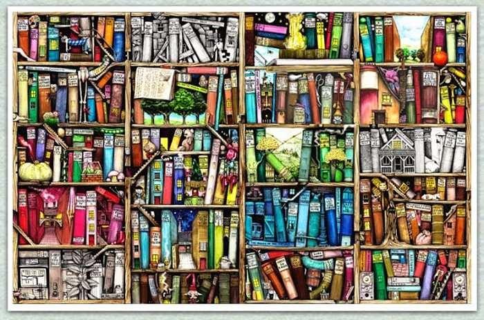 Overstuffed Bookcase